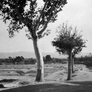 Bahai geschiedenis - Badasht