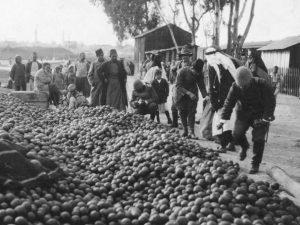 Palestina tijdens de oorlog